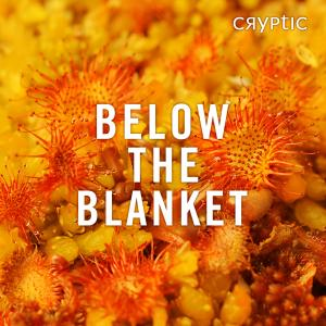 Below The Blanket Cover Image Branded Square Credit Lorne Gill SNH2