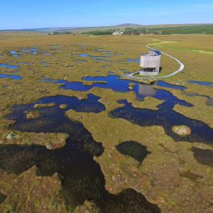 Bog pools and the Flows Lookout at Forsinard credit Neil Cowie RSPB