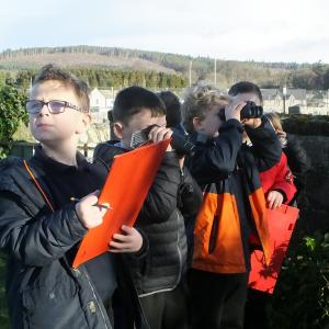 Lining up for the birdwatch Golspie Primary new dimensions 2